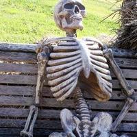 Esqueleto/Caveira